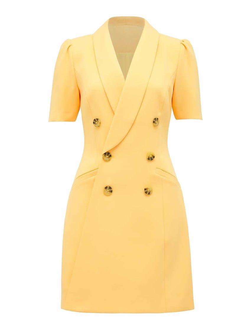 Anita Blazer Dress